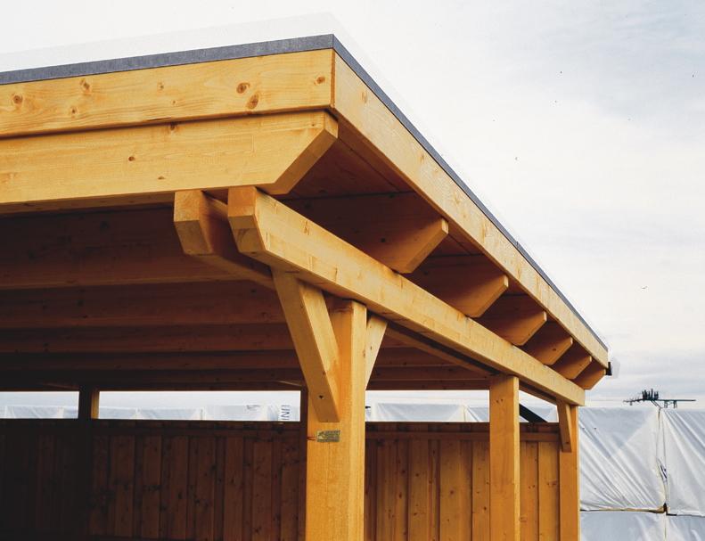 Holz Carport Bausatz Skanholz 171 Emsland 187 Flachdach Doppelcarport Leimholz Kaufen Im Holz Haus